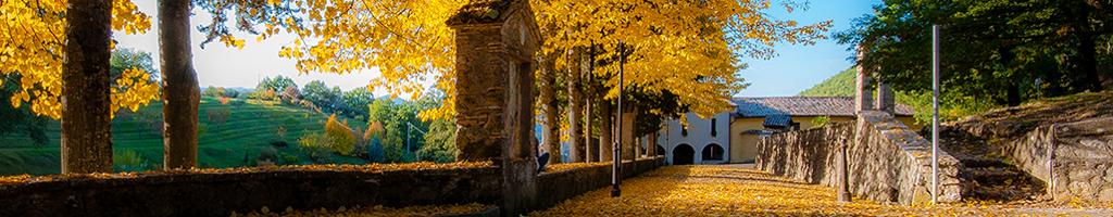 Itineriario 3 – Fonte Colombo, La Foresta, Greccio, Poggio Bustone